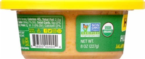 Hope Foods Organic Jalapeno Cilantro Hummus Perspective: left