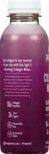 Vital Proteins Blackberry Hibiscus Collagen Water Perspective: left