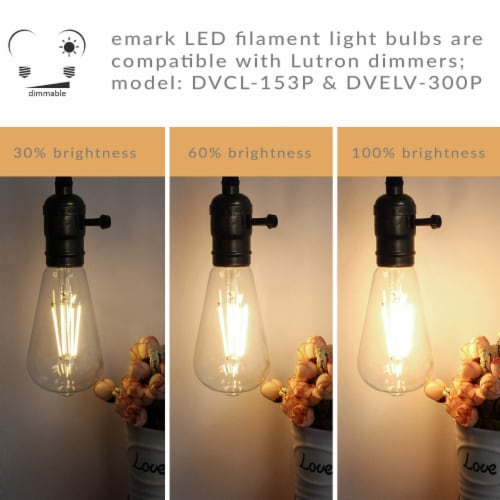 Vintage Style 60W Equivalent Warm White A19 LED Light Bulb Perspective: left