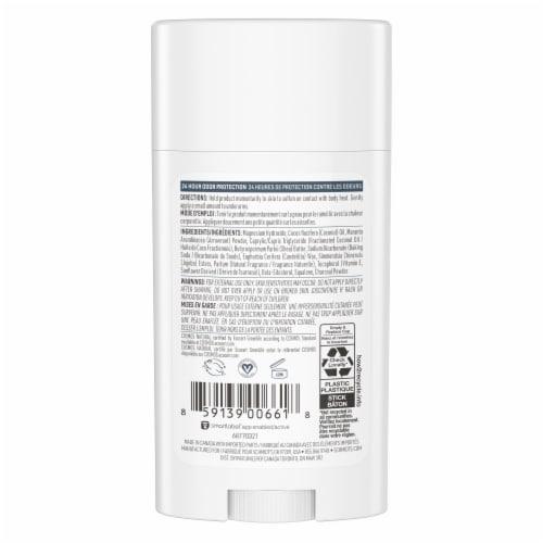 Schmidt's Aluminum-Free 24-Hour Odor Protection Charcoal & Magnesium Vegan Natural Deodorant Stick Perspective: left
