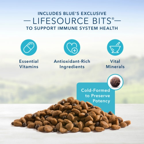 Blue Buffalo Life Protection Formula Lamb & Brown Rice Recipe Adult Dry Dog Food Perspective: left