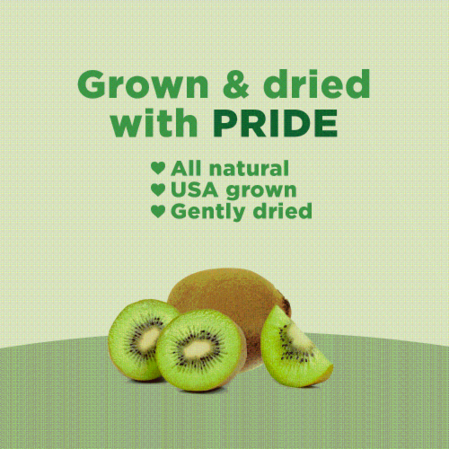 RIND Snacks Tangy Kiwi Dried Fruit Superfood - 3oz Bags, 6 Bags Total Perspective: left