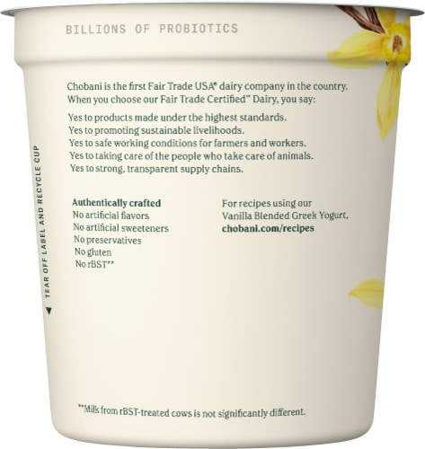 Chobani Vanilla Blended Non-Fat Greek Yogurt Perspective: left