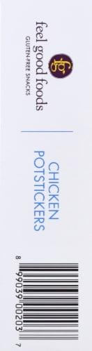 Feel Good Foods Chicken Potstickers  Dumpling Perspective: left