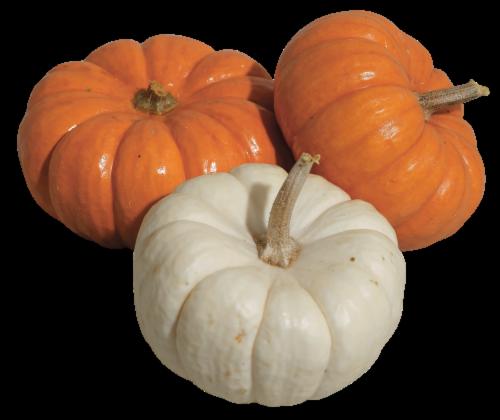 Mini Pumpkins (Up to 1 lb) Perspective: right
