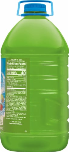 Hawaiian Punch Green Berry Rush Juice Perspective: right