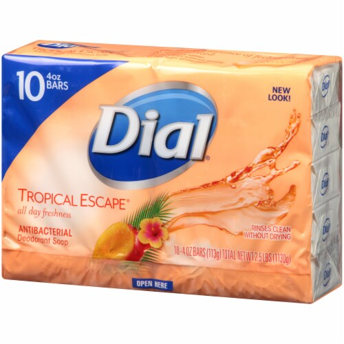 Dial® Tropical Escape® Antibacterial Deodorant Bar Soap Perspective: right