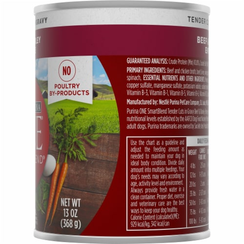 Purina ONE Natural SmartBlend Tender Cuts in Gravy Beef & Barley High Protein Wet Dog Food Perspective: right