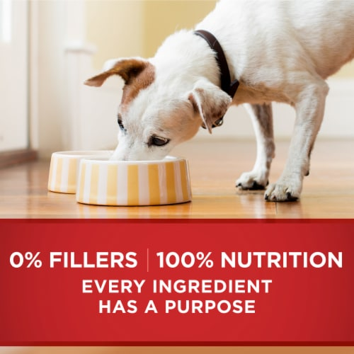 Purina ONE SmartBlend Healthy Weight Tender Cuts Lamb & Brown Rice Entree Adult Wet Dog Food Perspective: right