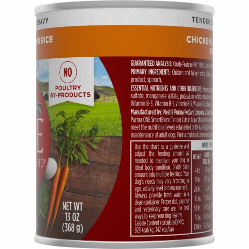 Purina ONE SmartBlend Tender Cuts Chicken & Brown Rice Entree in Gravy Adult Wet Dog Food Perspective: right