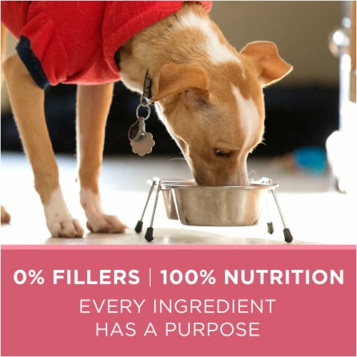 Purina ONE SmartBlend Sensitive Systems Formula Natural Dry Adult Dog Food Perspective: right
