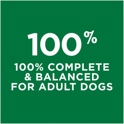 Dog Chow® Complete Adult with Real Chicken Dry Dog Food Perspective: right