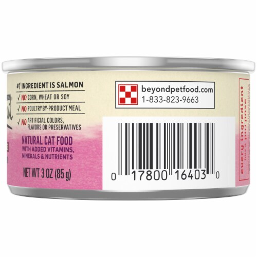 Beyond® Grain-Free Wild Salmon Recipe Pate Wet Cat Food Perspective: right