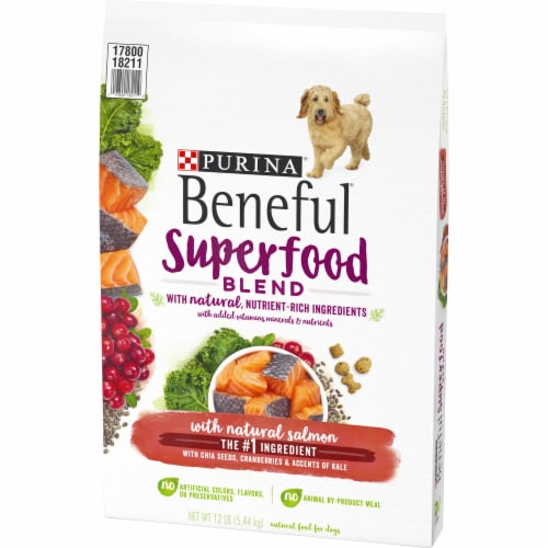 Beneful Superfood Blend Salmon Dry Dog Food Perspective: right