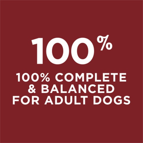Dog Chow Complete Adult with Real Beef Dry Dog Food Perspective: right