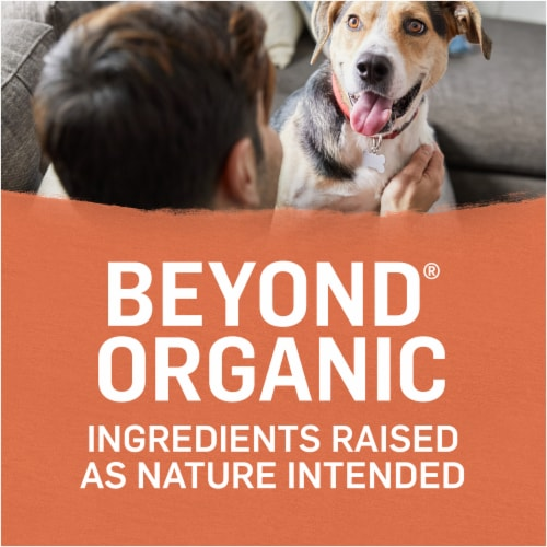 Beyond Organic Chicken Egg & Sweet Potato Adult Dry Dog Food Perspective: right