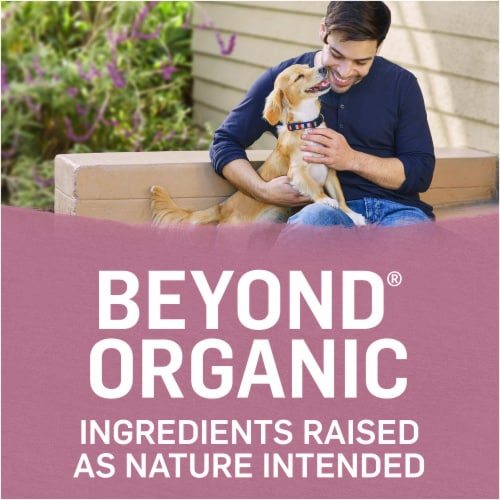 Beyond Organic Chicken Egg & Carrot Recipe Small Dog Food Perspective: right