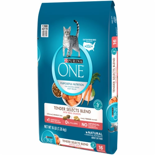 Purina ONE Tender Selects Blend with Real Salmon Natural Dry Cat Food Perspective: right