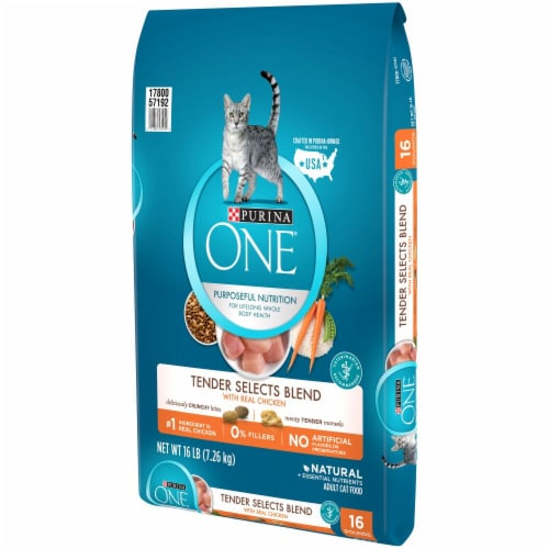 Purina ONE Tender Selects Blend with Real Chicken Natural Dry Cat Food Perspective: right