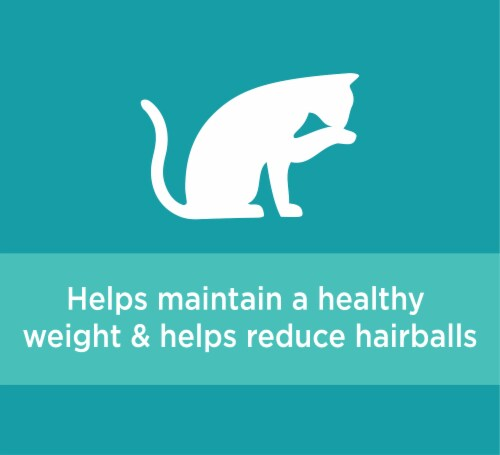 IAMS ProActive Health Indoor Weight & Hairball Care with Chicken & Turkey Adult Dry Cat Food Perspective: right
