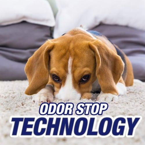 Resolve Pet Expert Stain & Odor Remover Perspective: right