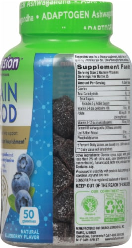 Vitafusion Natural Blueberry Flavor Brain Food Adult Gummy Vitamins Perspective: right