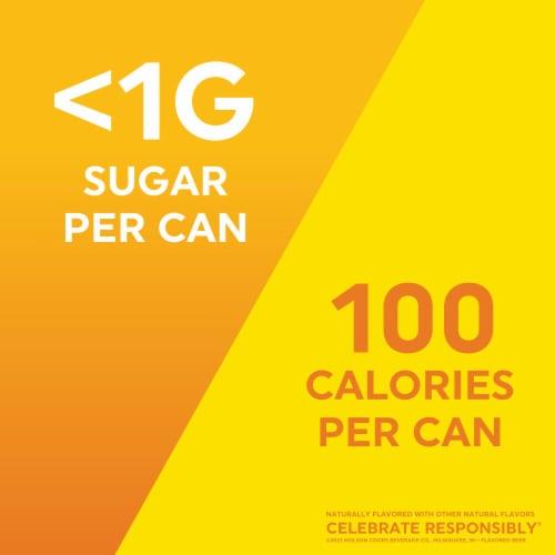 Vizzy™ Lemonade Hard Seltzer Variety Pack Perspective: right