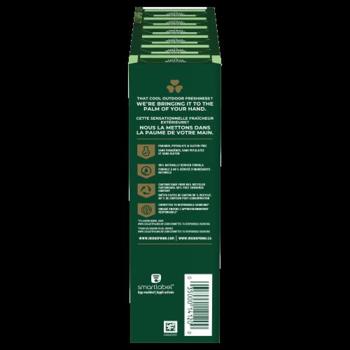 Irish Spring Aloe Deodorant Soap Bars Perspective: right