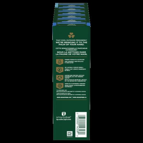 Irish Spring Moisture Blast with Hydrobeads12 Bars Perspective: right