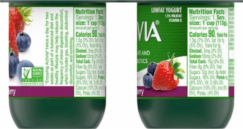 Activia Mixed Berry Lowfat Probiotic Yogurt Perspective: right