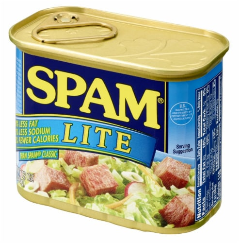 SPAM Lite Perspective: right