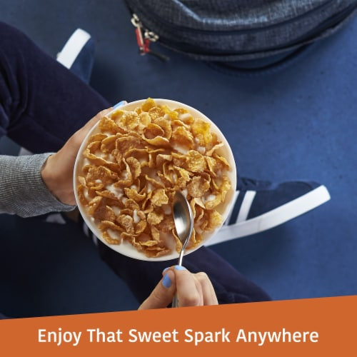 Frosted Flakes Cereal 2 Bag Box Perspective: right