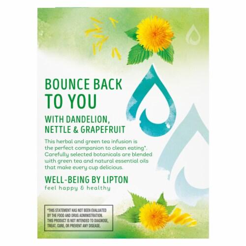 Lipton Detox Dandelion Nettle Grapefruit Green Tea Bags Perspective: right