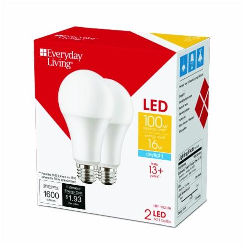 Everyday Living® 16 Watt (100 Watt) A21 Daylight LED Light Bulbs Perspective: right