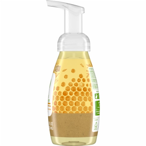 Simple Truth™ Honey Oatmeal Foaming Hand Soap Perspective: right