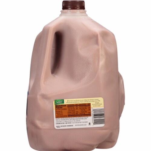 Kemps Select 1% Lowfat Chocolate Milk Perspective: right