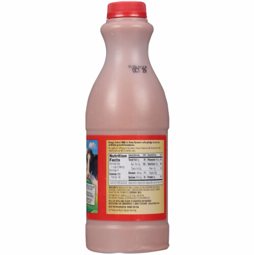 Kemps Select 2% Reduced Fat Chocolate Milk Perspective: right