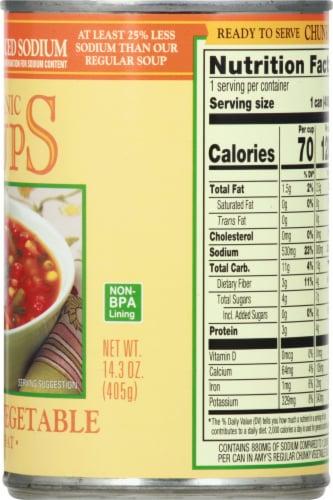 Amy's Organic Reduced Sodium Low Fat Chunky Vegetable Soup Perspective: right