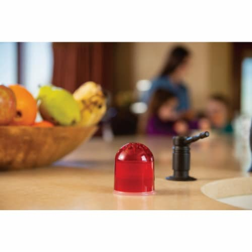 Rescue Reusable Fruit Fly Trap (2-Pack) FFTR2-BB4 Perspective: right