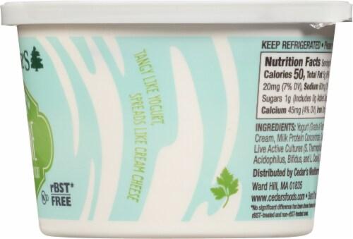 Cedar's Mediterranean Labne Yogurt Spread Perspective: right