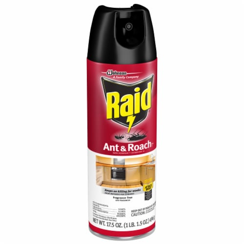 Raid® Fragrance Free Ant & Roach Killer Perspective: right