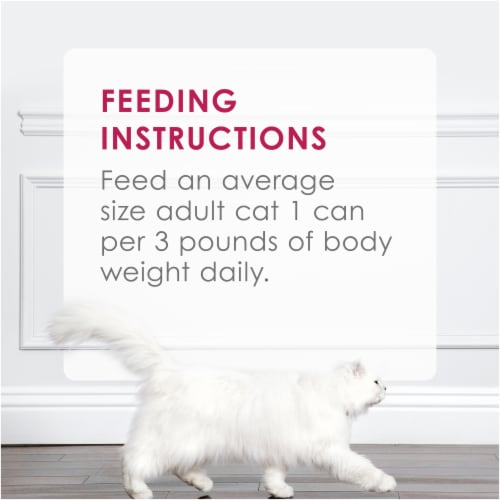 Fancy Feast Sliced Chicken Feast in Gravy Wet Cat Food Perspective: right