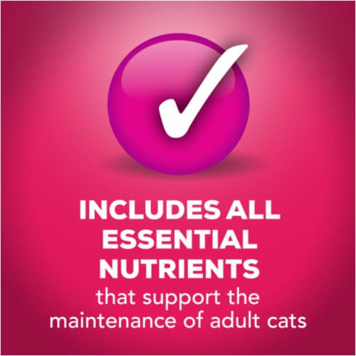 Friskies® Prime Filets with Salmon & Beef in Sauce Wet Cat Food Perspective: right