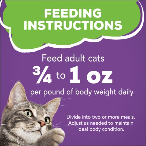 Friskies Pate Turkey & Giblets Dinner Wet Cat Food Perspective: right