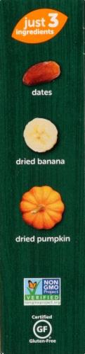 Beech-Nut Naturals Banana & Pumpkin Fruit & Veggie Bars Perspective: right