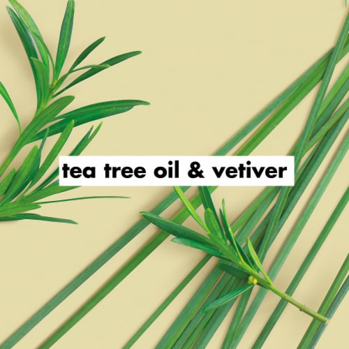 Love Beauty & Planet Daily Detox Tea Tree Oil & Vetiver Hand Soap Perspective: right