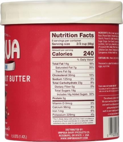 Umpqua Chocolate Peanut Butter Ice Cream Perspective: right