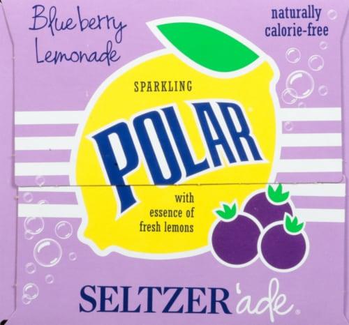 Polar Blueberry Lemonade Seltzer Perspective: right