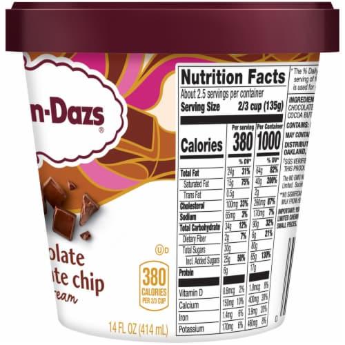 Haagen-Dazs Chocolate Chocolate Chip Ice Cream Perspective: right