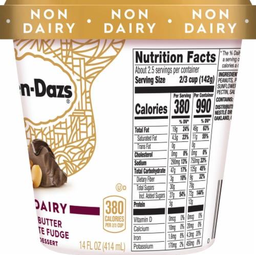 Haagen-Dazs Non-Dairy Peanut Butter Chocolate Fudge Frozen Dessert Perspective: right